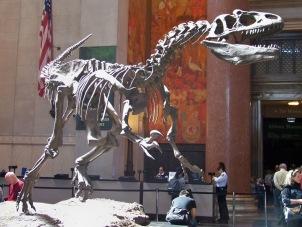 Natural History 10