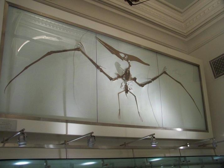 Natural History 2